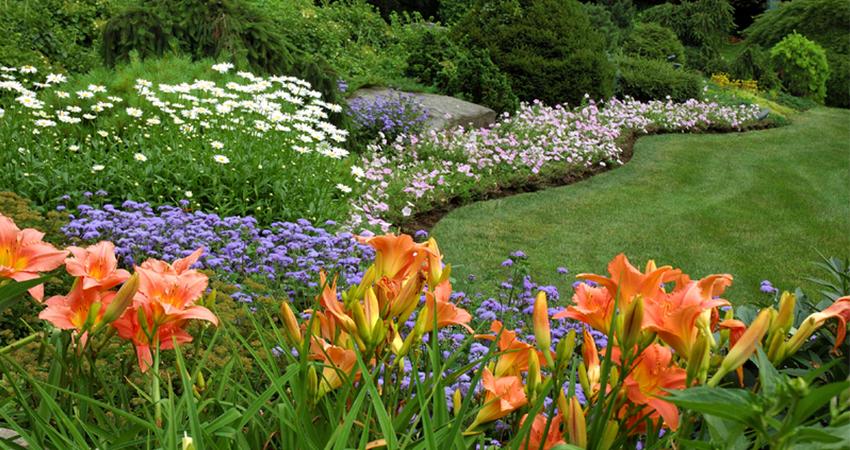 Hamak-Gartenpflege